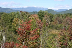 View from Scenic Vista in North Conway