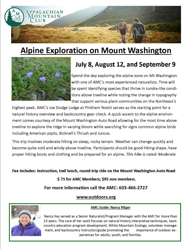 Alpine Exploration on Mount Washington