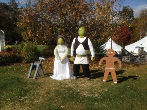 Shrek and Fiona get Married at Eagle Mountain House!
