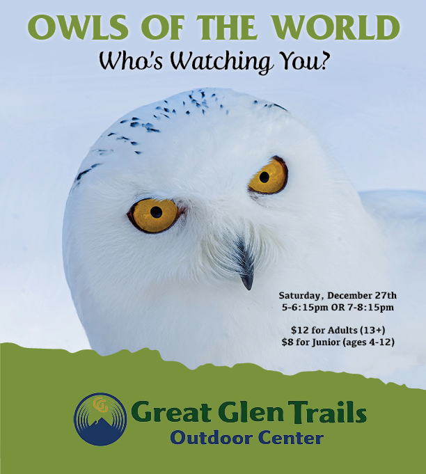 Owls of the World Seminar at Great Glen Trails!