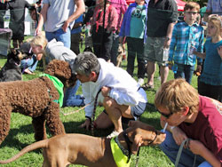 18th Annual Walk for the Animals and Bark in the Park Saturday, Sept. 26