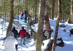 Guided Snowshoe Tour at Jackson Ski Touring Center