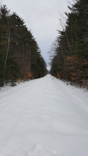 nordic-skiing-12-24-16