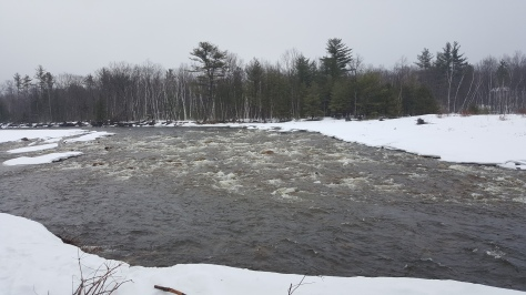 the-saco-runs-alongside-bear-notch-trails