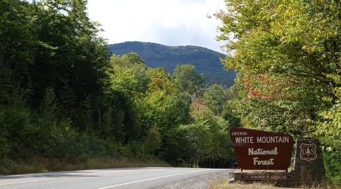 WHITE MOUNTAIN NATIONAL FOREST STEWARDSHIP: VALUING AND PROTECTING OUR TOURISM PRODUCT FOR THE FUTURE