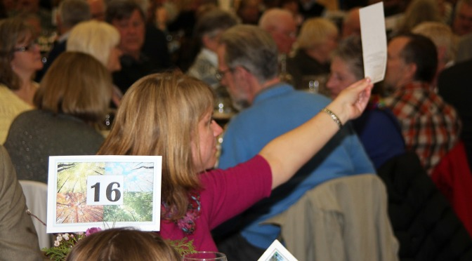 Inaugural First Season Online Auction to Support Tin Mountain Conservation Center